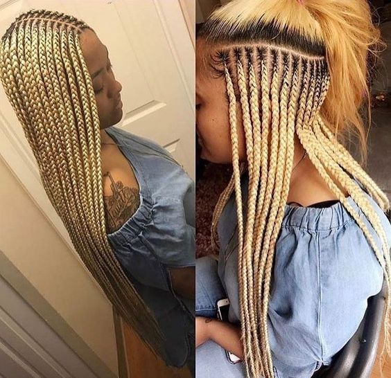 African Braids Styles Pictures 2020: Best Braided ...